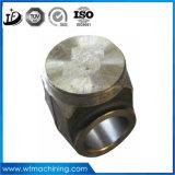 La precisione dell'acciaio inossidabile di Customed muore forgiare e pezzo fucinato di figura per le parti forgiate a forma di
