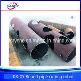 Machine satisfaisante de vente en métal de pipe de tube de découpage en aluminium chaud de commande numérique par ordinateur Plasme