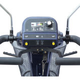 Vier Wheels Mobility Scooter, 800W Mobility Scooter (EML48)