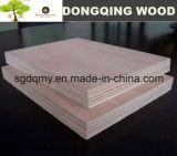 Preços da madeira compensada para India Bangalore 9mm 12mm 15mm