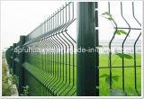 Гальванизированная и PVC Coated ячеистой сети загородка для сбывания