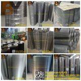 Rete metallica saldata ricoperta PVC galvanizzata dell'acciaio inossidabile