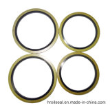 Autocentrage Caoutchouc Type Metal Bonded Seals