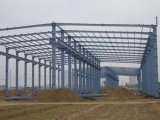 Forte Steel Structure Workshop con Crane Beam