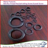 고품질 DIN127 봄 세탁기