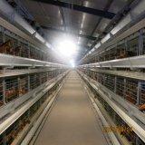 フルオートマチック電池の家禽装置の鶏のケージシステム