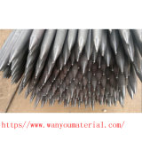 Bodenschraube für Zaun-Gatter, Fabrik-direktes Zubehör, beste Qualität