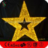 Lumières décoratives extérieures de motif d'étoile de Noël 3D de DEL