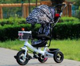 Bambino Tricycle/Kids Tricycle/Baby Tricycle con Fashion Design (OKM-667)
