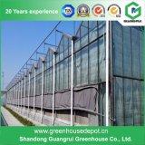 type de Venlo de Multi-Envergure de modèle moderne serre chaude en verre pour la plantation