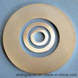 Aimant magnétique de disque. NdFeB N48 N52