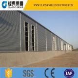 Alta calidad y almacén rápido de la estructura de acero de la instalación