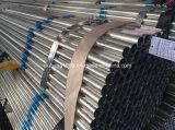 Galvanisiertes Stahlrohr-/Galvanized-Stahlgefäß/galvanisiertes Conduit/Zn Coated-81