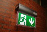 Signes indépendants de sortie de lumière Emergency de DEL (autotest ou surface adjacente de DALI)
