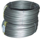8mm 10mm Low Carbon Steel Wire Coil