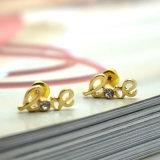 Het uitstekende Gefacetteerde Goud Zircon plateerde Geplaatste de Oorringen van de Nagel van de Brief van de Liefde