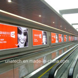 Rectángulo ligero LED de la bandera del anuncio de Frameless de los media de los PP del subterráneo de papel de aluminio de la señalización