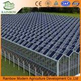 花または野菜のための環境の光起電パネルの温室