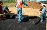 Geocell voor Vlot HDPE van de Diepte van de Cel van de Matten van het Zaad van het Gras