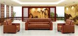 Sofá chinês do escritório, sofá de couro, sofá moderno (8112)
