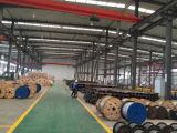 Kraftübertragung-unterstützte Aluminiumleiter-Stahl Acss/Tw Leiter