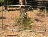 호주 농장 문