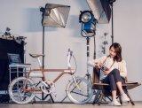 Eバイクのベストセラーのグリーン電力のアルミニウム自転車の高品質の電気バイクの取り外し可能な電池