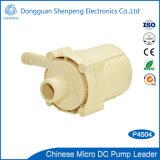 12V 24V 48V Pomp van het Water van de Rang van het Voedsel van de Hoge druk de Mini met Hoofd 6~9m