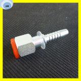 Assemblage de tuyaux hydrauliques féminins Bsp de 60 degrés 22611