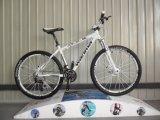 Alloy Frameの新しいType 21 Speed Mountain Bike