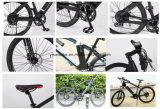 ロシアの市場のための方法デザインの山様式の電気バイク