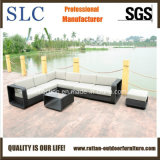 Софа напольной софы установленная/Wicker/софа мебели (SC-B8915)