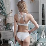 Комплект нижнего белья повелительниц новой конструкции безшовный сексуальный
