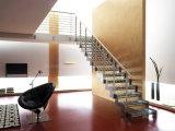 Нутряные двойные лестницы стальных плит с прокатанной проступью Tempered стекла для селитебного Bulding