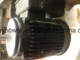 Motor de inducción trifásico de ms Series