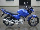Hot YAMAHA Ybr125 moto de rua 200cc da rua (GW125-D)