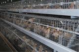 Клетка цыпленка слоя птицефермы техника Китая Poul (горячее гальванизирование)