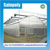 農業のトマトのための高品質のプラスチックフィルムの温室