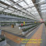 건축재료 강철 구조물 녹색 집