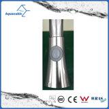 Rubinetto d'ottone del dispersore di cucina della singola maniglia di Upc (AF1871-5)