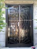 錬鉄およびガラスの出入口