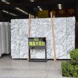 2017 Comercio al por mayor del azulejo Arabescato losa, piedra de mármol blanco