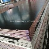 Le contre-plaqué marin de faisceau de peuplier/bouleau/bois dur/le contre-plaqué/film Shuttering ont fait face au contre-plaqué pour la construction (HB001)
