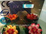 4 [تو] [6مّ] مرآة برونزيّ مع [س/يس]