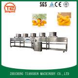 洗浄の果物と野菜のための空気乾燥機械