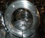 サウジアラビア0.71mm -0.91mmは建物のタイワイヤーに電流を通すか、または販売のための鉄ワイヤーに電流を通した