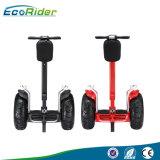 전기 스쿠터를 균형을 잡아 도로 각자 떨어져 최신 Ecorider E8