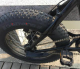 20インチの脂肪質のタイヤの電気自転車の折りたたみ