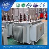 Standard S13, trasformatore a bagno d'olio di IEC/ANSI di distribuzione di sigillamento completo a tre fasi 6kv