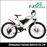 Bicicleta eléctrica de gran alcance Ebike de la montaña de la alta calidad